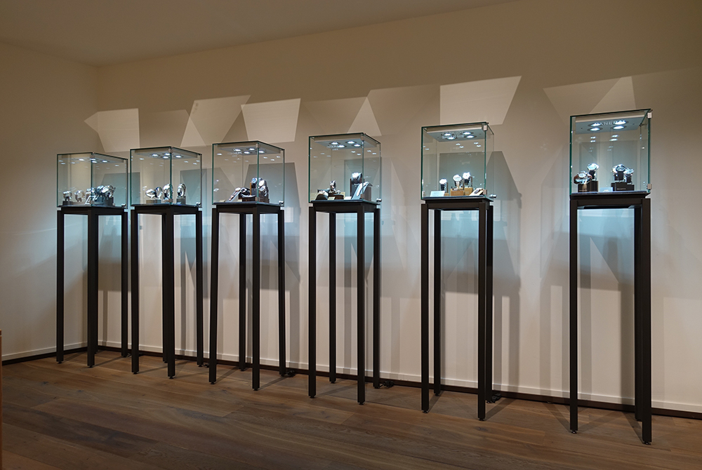 Anthares display case
