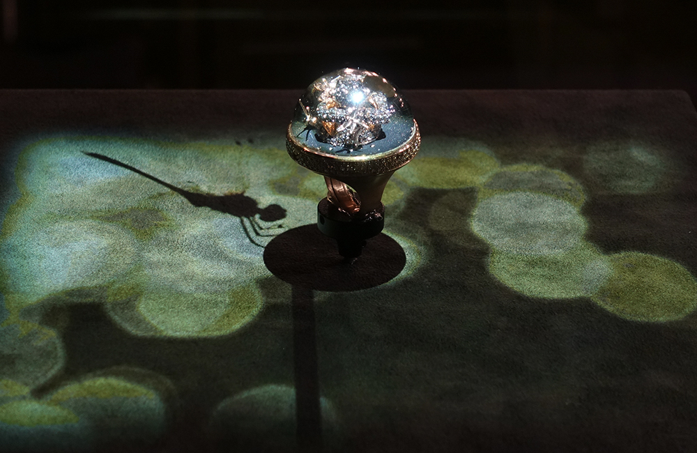 Dreamboule at Baselworld: An animation that brings the product to life, emphasizing its creativity.